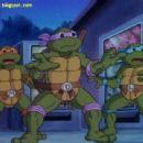 Teenage Mutant Ninja Turtles - 454 x 309