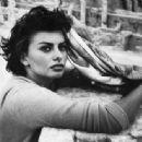 Sophia Loren - 454 x 335