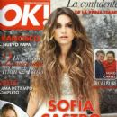 Sofía Castro- OK! Magazine Mexico April 2013 - 454 x 578