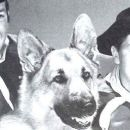 Rin Tin Tin - 454 x 256