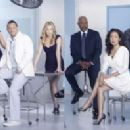 Grey's Anatomy Season shoot 2 - 454 x 198