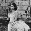 Sophia Loren - 384 x 646