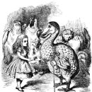 The Dodo Bird