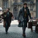Fantastic Beasts: The Crimes of Grindelwald (2018) - 454 x 302