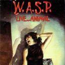 W.A.S.P. - Live...Animal