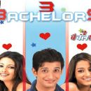 3 bachelors 2012 Movie Posters