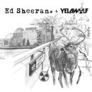 Ed Sheeran - The Slumdon Bridge