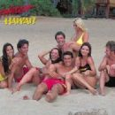 Baywatch Hawaii Poster