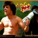 20th Century Fox's Kung Pow!: Enter The Fist - 2002