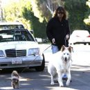 Billy Ray Cyrus takes his dogs out for a relaxing stroll through his neighborhood in Toluca Lake, California on April 4, 2014 - 454 x 376