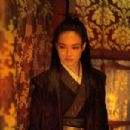 The Assassin (2015) - 454 x 303