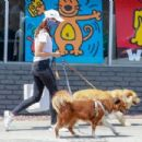 Aubrey Plaza – Out with her dogs