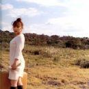 Ai Kago Suitcase - 454 x 592