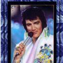 Elvis Peacock - 400 x 531