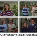 The Brady Bunch - 454 x 363