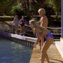 Flipper S02E01 - The White Dolphin
