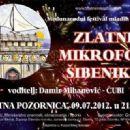 Damir Mihanović  -  Poster - 454 x 320