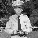 Don Knotts as Barney Fife