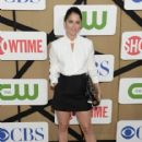 Robin Tunney attends the CW, CBS And Showtime 2013 Summer TCA Party on July 29, 2013 in Los Angeles, California