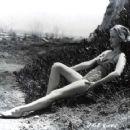 Anne Francis - 454 x 360