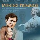 Evening Primrose Starring Anthony Perkins- Music By Stephen Sondheim - 312 x 445