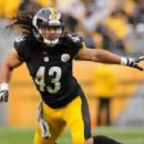 Troy Polamalu - 454 x 284