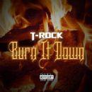 T-Rock - Burn It Down - Single