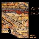 David Hayes (musician) - Born Heroes
