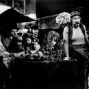Pohádka o mokrosuchém stestí (1981)