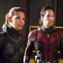 Evangeline Lilly as the Wasp in Ant-Man and the Wasp - 454 x 254