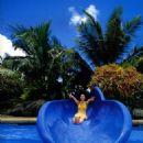 Kusumi Yellow bikini - 454 x 627