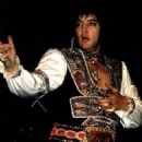 Elvis Presley - 454 x 619