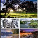 Jeff Rodgers I - 411 x 685