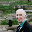 Jane Goodall - 363 x 594