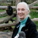 Jane Goodall - 396 x 594