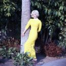 Jeannine Riley - 454 x 454