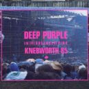 In the Absence of Pink: Knebworth 85