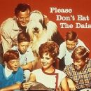 Please Don't Eat the Daisies - 320 x 245