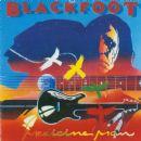 Blackfoot - Medicine Man