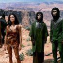 Titles: Planet of the Apes People: Charlton Heston, Kim Hunter, Roddy McDowall, Linda Harrison, Lou Wagner Character: George Taylor, Zira, Cornelius, Nova, Lucius - 454 x 255