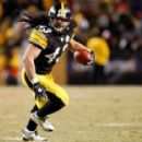 Troy Polamalu - 454 x 286