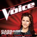 Cassadee Pope - Are You Happy Now? (The Voice Performance)