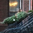 Keri Russell manages her Christmas Tree.....alone