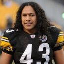 Troy Polamalu - 450 x 380