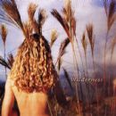 Sophie B. Hawkins Album - Wilderness