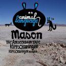 Mason Album - Kippschwinger