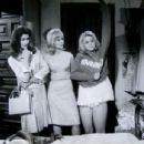The Pleasure Seekers, 1964 - 454 x 345