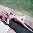 Janis Paige - 454 x 570