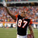 Andre Caldwell - 416 x 594