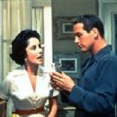 Cat on a Hot Tin Roof - Paul Newman - 454 x 299